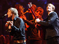 Im Oktober spielen Mando Diao drei Unplugged-Shows in Deutschland (Foto: Public Address)
