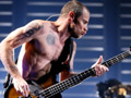 Die Live-Auftritte der Red Hot Chili Peppers sind energiegeladen (Foto: Public Address)